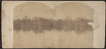 Buildings along a lake, probably Skaneateles Lake (N.Y.), by Edwards, J., fl. 185--186-.png