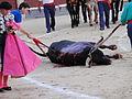 Bullfighting in Madrid (4141523394).jpg