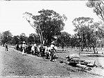 Bullock team clearing drains, 1859 - 1917 (4903279681).jpg
