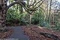 Bushy Park, Dublin (8390606258).jpg