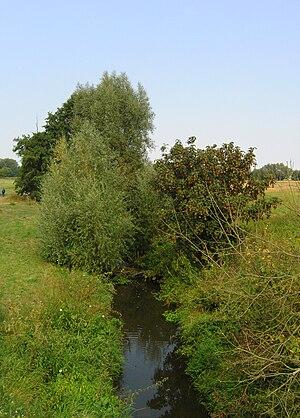 Bystřice (river) - Bystřice River in Boharyně