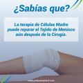 Células Madre para Cirugías de Menisco.png