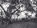 COLLECTIE TROPENMUSEUM Westenenksche weggetjes Fort de Kock Padangsche Bovenlanden TMnr 60038727.jpg