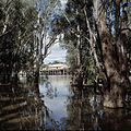 CSIRO ScienceImage 4618 Old wharf and buildings at the historic Port of Echuca on Murray River Victoria.jpg