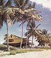CabanaVietnamita.jpg