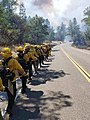 California National Guard - 48607457968.jpg