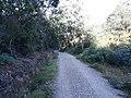 Camino Primitivo, Paradavella.jpg
