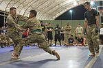 Camp Lemonnier Combatives Tournament 170113-F-QF982-1387.jpg
