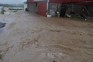 Flash flood - A flash flood greatly inundates a small ditch, flooding barns and ripping out newly installed drain pipes.
