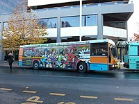 An ACTION bus painted with an ad for the Canberra Roller Derby League