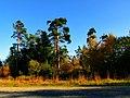 Car Park - panoramio.jpg