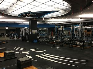 Carolina Panthers - The team's weight room inside of Bank of America Stadium.