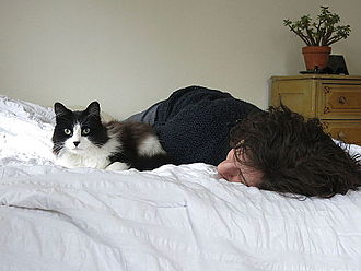 Human interaction with cats - A man sleeping on a bed with his cat