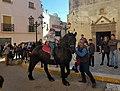 Cavall a la benedicció d'animals d'Alcalalí.jpg