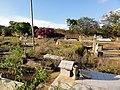 Cementerio Guaribe - panoramio (5).jpg