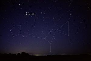 Cetus - The constellation Cetus as it can be seen by the naked eye.