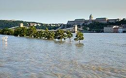337d30c08c A 2013-as árvíz a Lánchídnál Budapesten, 2013. június 9.