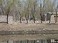 Changping, Beijing, China - panoramio (58).jpg