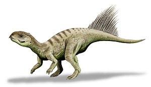 Oxfordian (stage) - Chaoyangsaurus