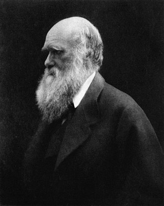 During the Darwin family's 1868 holiday in her Isle of Wight cottage, Julia Margaret Cameron took portraits showing the bushy beard Darwin grew between 1862 and 1866. Charles Darwin by Julia Margaret Cameron 2.jpg
