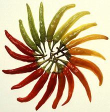 Charleston Hot peppers.jpg