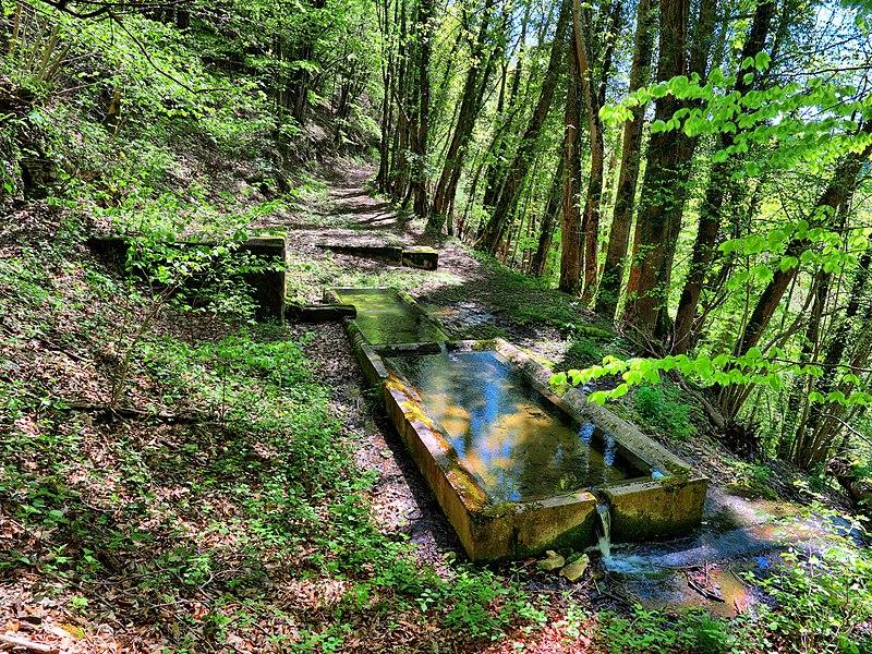 Réserve naturelle nationale du ravin de Valbois  La fontaine de Léri