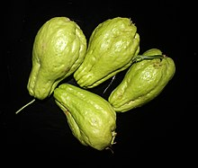 Chayote from Kattappana, Kerala.jpg