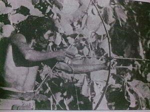 Chenchu people - Chenchu man hunting, Nallamala Forests, Andhra Pradesh.