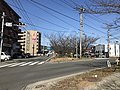 Cherry trees near Zasshonokuma Station 20180304-5.jpg
