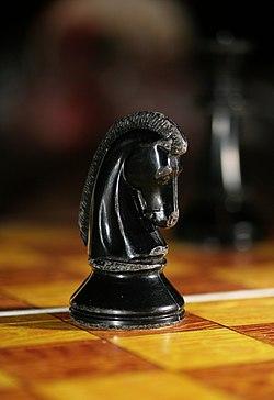 pferd beim schach