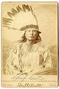 Chief Gall ca1880s.jpg