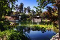 Chinese Garden Tranquility.jpg