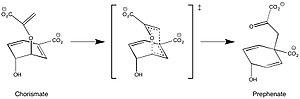 Chorismate mutase - Reaction catalyzed by chorismate mutase