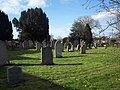 Churchyard at St Gregory's Church, Marnhull - geograph.org.uk - 362195.jpg
