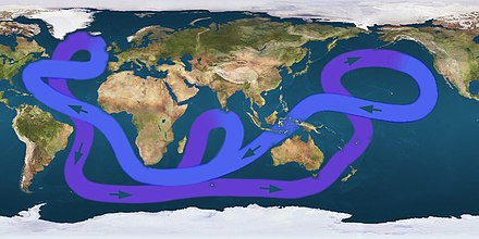 Path of the thermohaline circulation. Purple paths represent deep-water currents, while blue paths represent surface currents. Circulacion termohalina.jpg