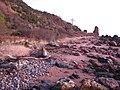 Coastal Path - geograph.org.uk - 104273.jpg