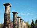 Columnes i capitells de la palestra d'Olímpia.JPG