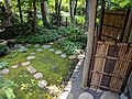 Como Park Zoo and Conservatory - 62.jpg