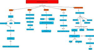 This is a concept map showing where IS is used...