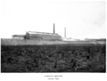 Coniston nickel smelter General view 1918.png