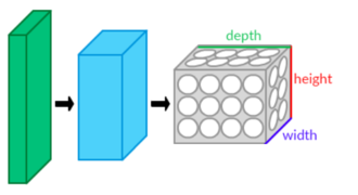 Convolutional neural network - CNN layers arranged in 3 dimensions