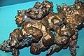 Copper crystals (Mesoproterozoic, 1.05-1.06 Ga; Quincy Mine, Hancock, Upper Peninsula of Michigan, USA) 5 (17106540307).jpg
