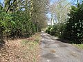 Country road to Colgate - geograph.org.uk - 1237167.jpg