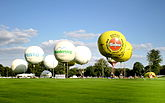 Several white balloons and two yellow balloons taking off from a grassy field.