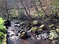Cragg Brook - geograph.org.uk - 389235.jpg