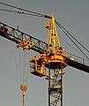 Cranewiki.jpg