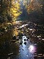 Creek With Stepping-Stones - panoramio.jpg