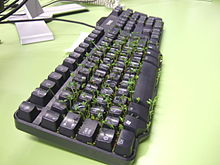 Cress keyboard-3 sprouting.jpg