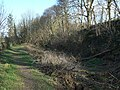 Cromford Canal above Sawmills - geograph.org.uk - 1231225.jpg