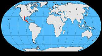 Brown jay - Image: Cyanocorax morio map